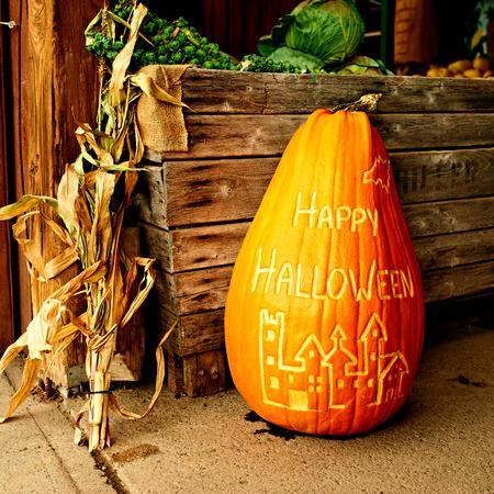 dynia: Dynia na halloween sprzedaży na rynku jesienią