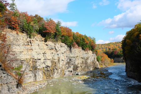 river: Autumn scene landscape of river and forest at Letchworth State Park