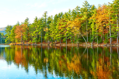 hampshire: Pond in White Mountain National Forest, New Hampshire, USA.