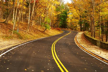estaciones del año: Escena del otoño con el camino en el bosque en el parque estatal Letchworth