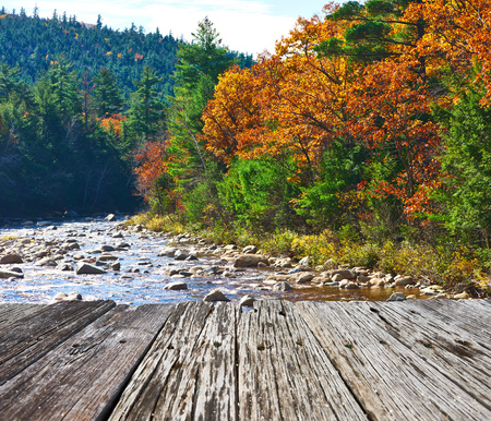 pine creek: Swift River at autumn in White Mountain National Forest, New Hampshire, USA.