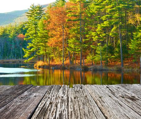 tree  pine: Estanque en el Bosque Nacional White Mountain, New Hampshire, EE.UU..