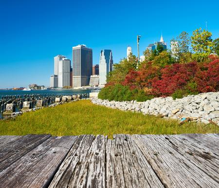 brooklyn bridge: Lower Manhattan skyline view from Brooklyn Bridge Park in New York City