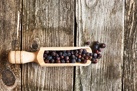 juniper tree: Wooden scoop with dried juniper berries over rustic background