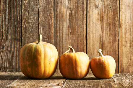 backdrops: Pumpkins on old wooden table