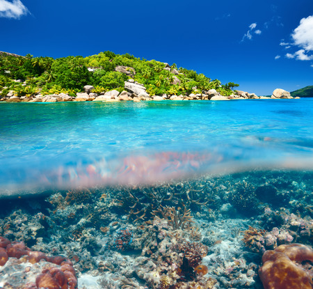 reef: Coral reef at Seychelles split view Stock Photo