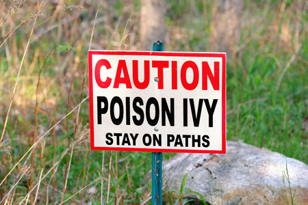 weeds: Poison Ivy warning sign in forest Stock Photo