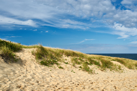 duna: Landscape with sand dunes at Cape Cod, Massachusetts, USA.