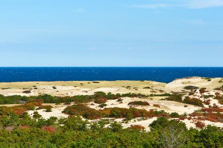 coastlines: Landscape at Cape Cod, Massachusetts, USA.