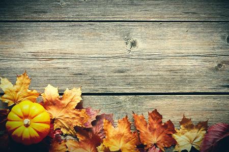 hojas antiguas: hojas de otoño y calabaza sobre fondo de madera vieja con el espacio de la copia Foto de archivo