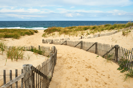 shore: Path way to the beach at Cape Cod, Massachusetts, USA. Stock Photo