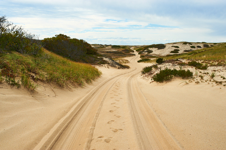 cape cod: Road in sand dunes at Cape Cod, Massachusetts, USA. Stock Photo