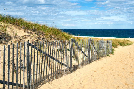 cape cod: Path way to the beach at Cape Cod, Massachusetts, USA. Stock Photo