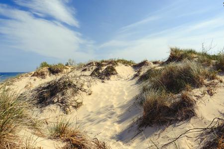 sable: Little Sable Point Dunes, Michigan, USA Stock Photo