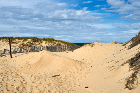 coastlines: Landscape with sand dunes at Cape Cod, Massachusetts, USA.
