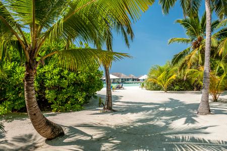 Schöne Insel Strand auf den Malediven