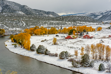 hoarfrost: Season changing, first snow and autumn trees. Rocky Mountains, Colorado, USA.