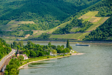 Vineyards at Rhine Valley (Rhine Gorge) in Germany