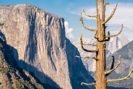 Yosemite National Park Valley summer landscape. California, USA. Stock Photo