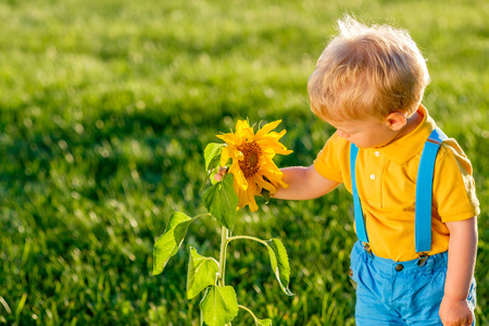 Portrait of toddler child outdoors. Rural scene with one year old baby boy looking at sunflower Foto de archivo