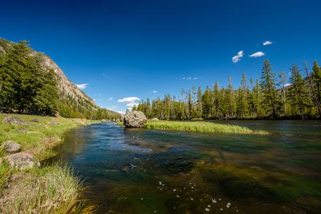 Madison River near West Yellowstone, Yellowstone National Park, Wyoming, USA