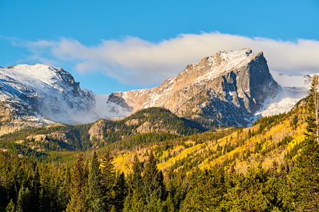 Aspen grove at autumn. Rocky Mountain National Park. Colorado, USA. Фото со стока - 104040300