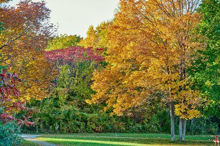 Autumn scene landscape somewhere in New England