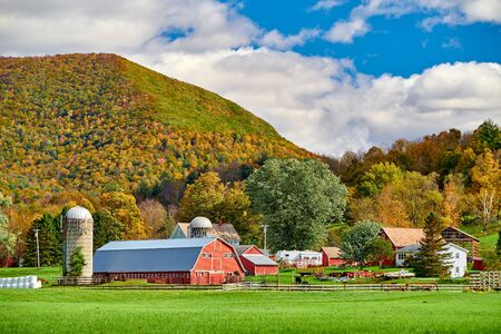 Farm with red barn and silos at sunny autumn day in West Arlington, Vermont, USA Stock Photo