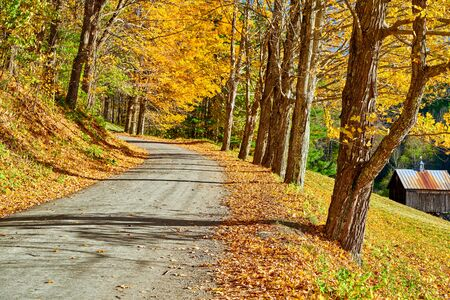 Dirt unpaved gravel road at autumn day in Vermont, USA.