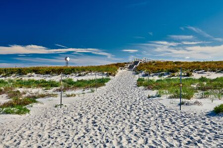 Access trail to Crane beach, Ipswich, Massachusetts, USA
