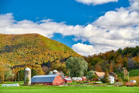 Farm with red barn and silos at sunny autumn day in West Arlington, Vermont, USA Imagens - 128905983
