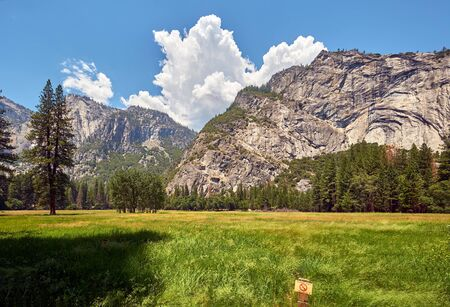 Meadow in Yosemite National Park Valley. California, USA. Imagens - 128905986