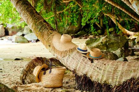 Beach bag and hats by palm tree at Mahe, Seychelles. Imagens