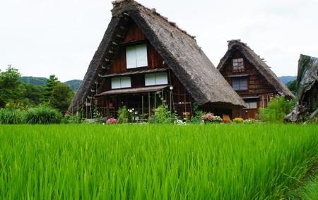 歴史的な村岐阜県白川郷日本の伝統的な日本の家スタイル 写真素材 - 33185250