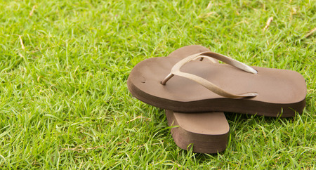 Sandal on the green grass  Stock Photo