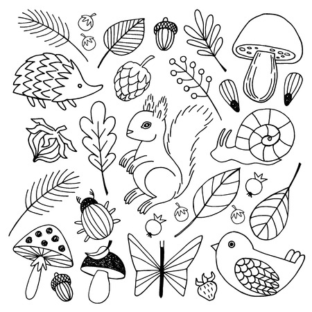 Forest animals vector isolated on white  background.