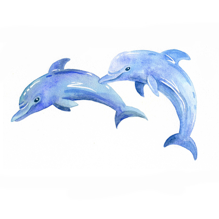 Dolphin watercolor raster.