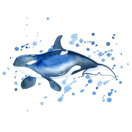 Killer whale watercolor raster. Animals underwater world raster. Foto de archivo - 103958001