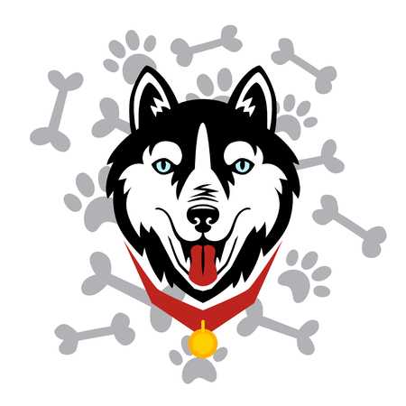 Husky head dog, bone, paw vector design. Illustration