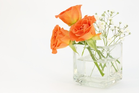 baby s: Roses and baby s breath in glass vase