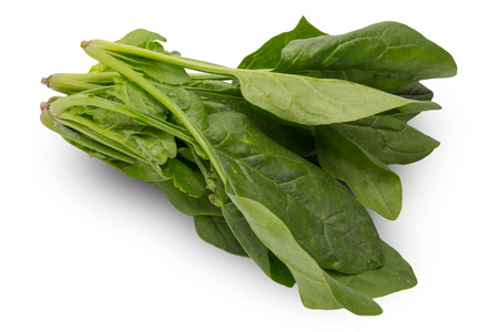 Spinach in a white background