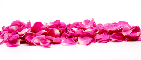rosas blancas: P�talos de rosa