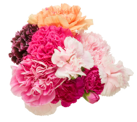 Bouquet of carnation