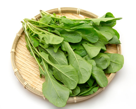 rucola: Rucola in a colande Stock Photo
