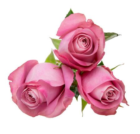 Bouquet of roses 版權商用圖片