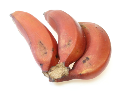 赤バナナ 写真素材