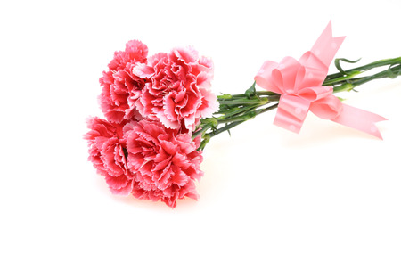 Bouquet of carnation with a ribbon Banco de Imagens