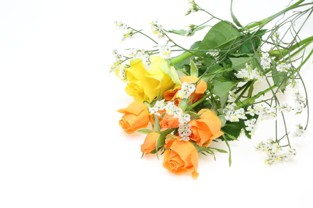 babys: Bouquet of roses and babys breath