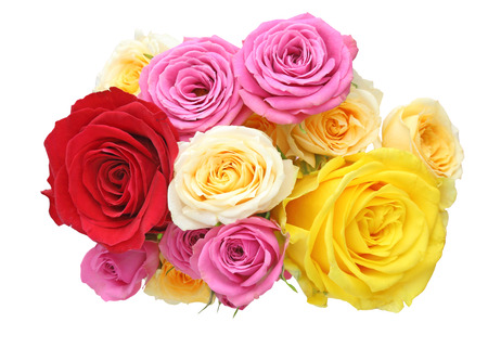 pink roses: Bouquet of roses Stock Photo