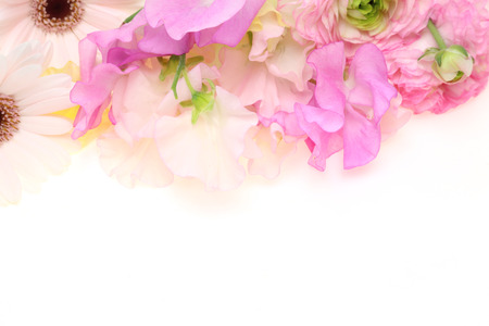 persian buttercup: Bouquet of sweetpea, persian buttercup and transvaal daisy